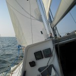 Mini Transat 713 - view to leeward